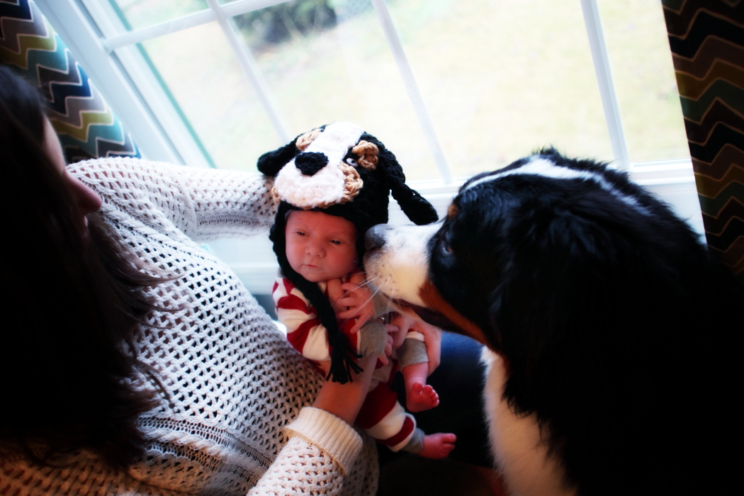 Yeti helps welcome Jackson into the world!